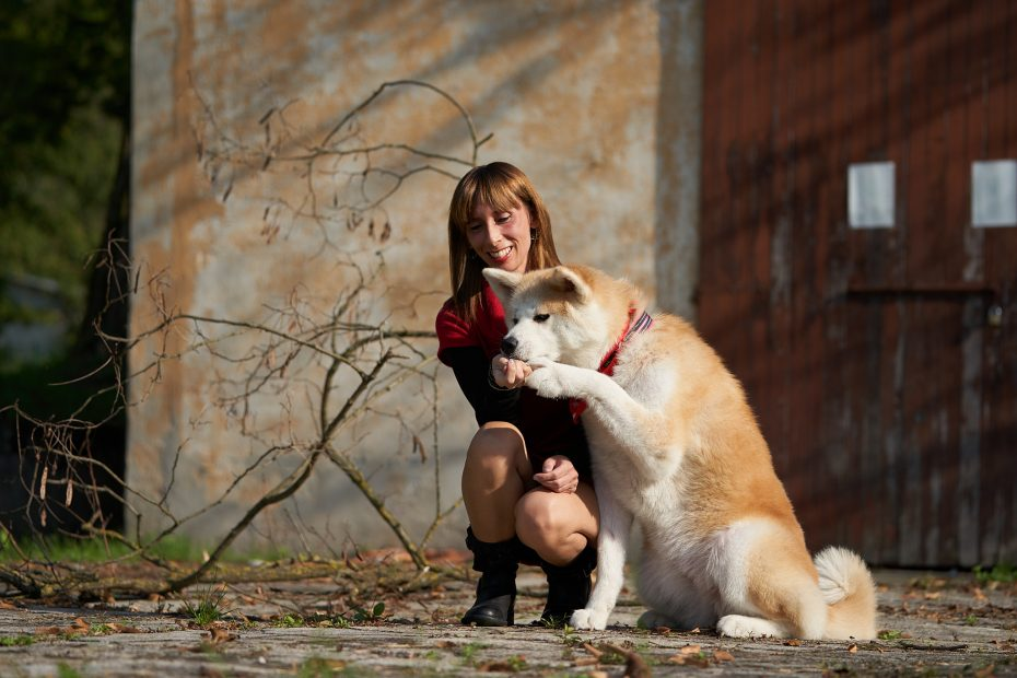 I cani sono straordinariamente vicini agli umani